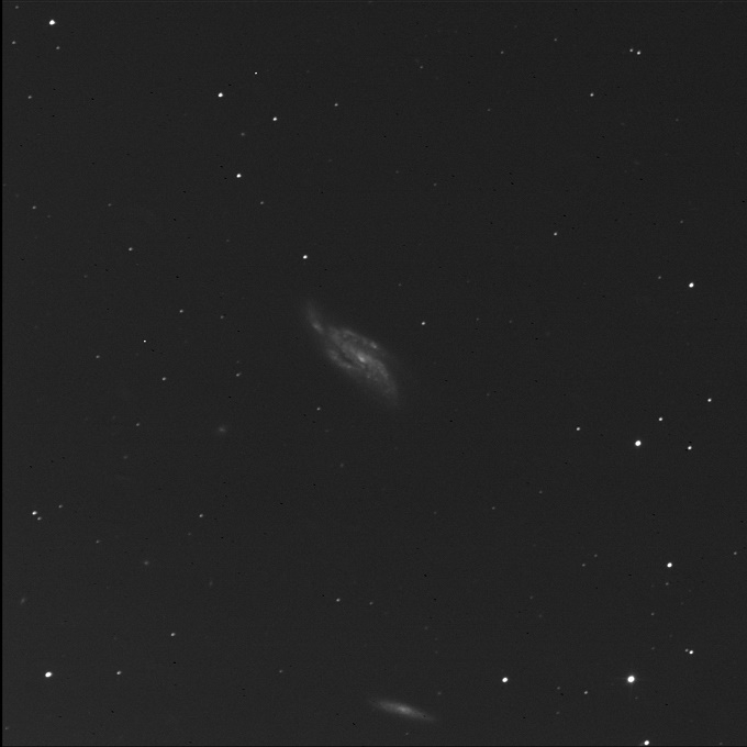 disturbed galaxy NGC 4088 in luminance