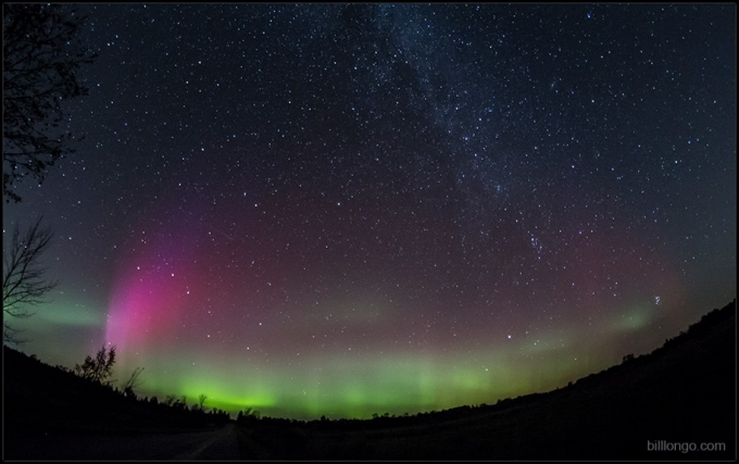 Aurora By Bill Longo